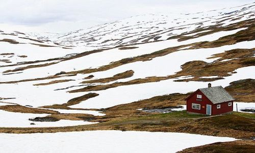 Zdjecie NORWEGIA / brak / Okolice Sognefjord / III