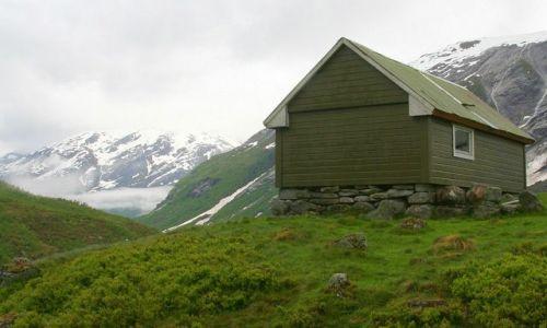 Zdjęcie NORWEGIA / brak / Okolice Sognefjord / IV