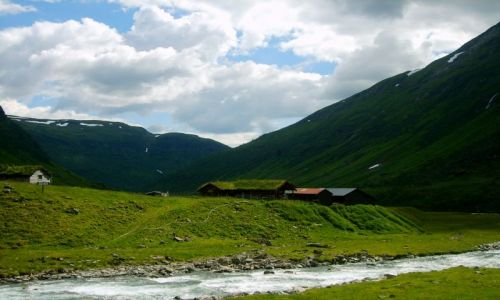 Zdjęcie NORWEGIA / okolice Sognefjorden / brak / W drodze do Sognefjorden3