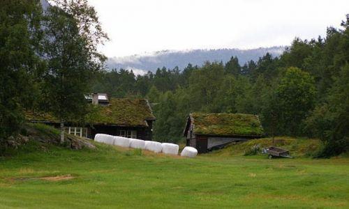Zdjecie NORWEGIA / Południowe wybrzeże / W drodze do Lysefjorden / Domki Troli?