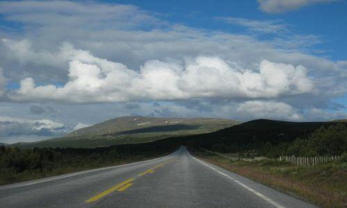 Zdjecie NORWEGIA / brak / jeden z park�w narodowych / road 66