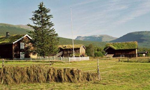 Zdjęcie NORWEGIA / Finmark / okolice Tromso / Prawdziwe bogactwo Norwegii