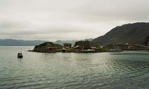 Zdjecie NORWEGIA / Finmark / okolice Olderfijord / Surowo�� p�noc