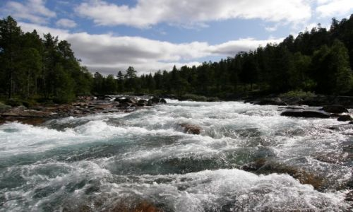 Zdjecie NORWEGIA / Narvik / Narvik / Rzeka