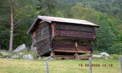 Zdjecie NORWEGIA / Okolice Sognefiordu / okolice Geilo / prawie wszędzie w Norwegii