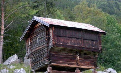 Zdjecie NORWEGIA / Sognefiord / okolice Geilo / norweska chatka-poprawiona fotka