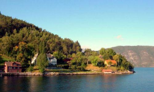 Zdjęcie NORWEGIA / Sognefiord / sognefjord / tu mogłabym mieszkać