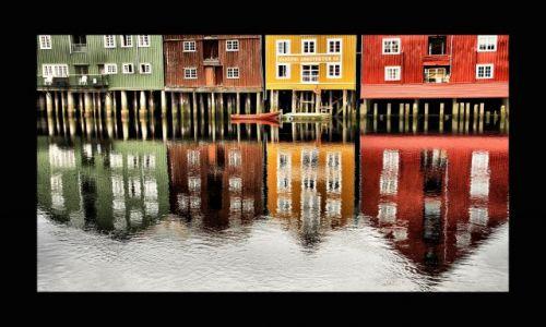 NORWEGIA / środkowa Norwegia / Trondheim / kolorowe domy