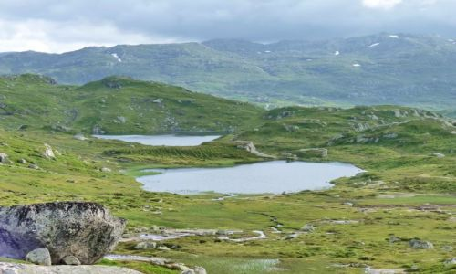 NORWEGIA / Telemark / droga / Krajobraz zachodni Telemark