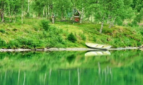 NORWEGIA / Nordland / Nordland / Zacisze fjordu