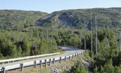 Zdjęcie NORWEGIA / Buskerud / okolice Geilo / Środkowa Norwegia 2