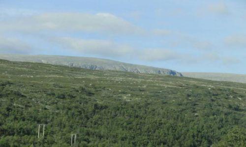 Zdjęcie NORWEGIA / Buskerud / okolice Geilo / Środkowa Norwegia 3