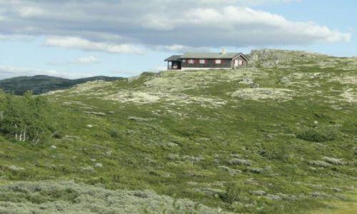 Zdjecie NORWEGIA / Buskerud / okolice Geilo / Środkowa Norweg