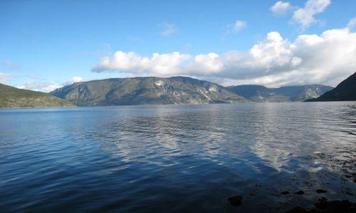 Zdjecie NORWEGIA / po drodze do forde / sognefjorden / fjord