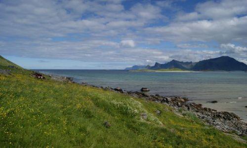 Zdjecie NORWEGIA / Nordland / Lofoty / słonecznie...