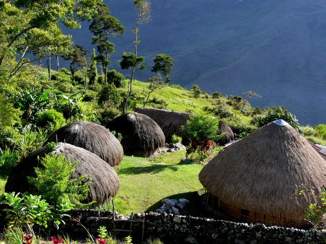 Zdj�cia: Wamena, Papua, Papuaska wioska, NOWA GWINEA