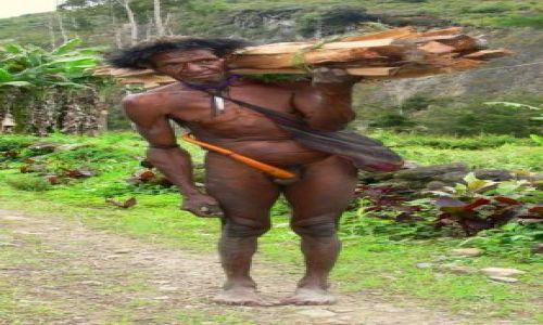 Zdjęcie NOWA GWINEA / Papuya/Irian Jaya / Wioska Syokosimo / Papuas II