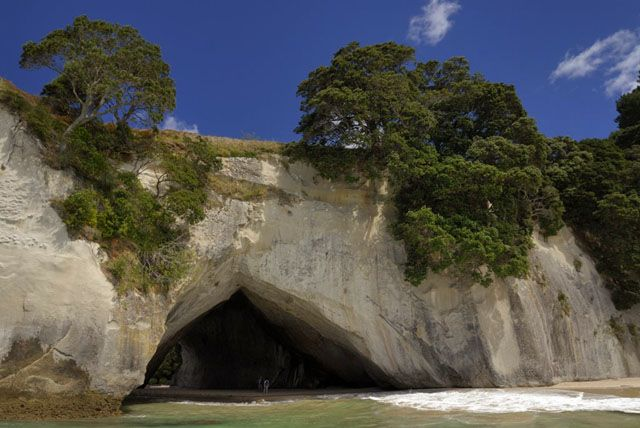 Zdjęcia: wyspa polnocna, bialy klif, NOWA ZELANDIA