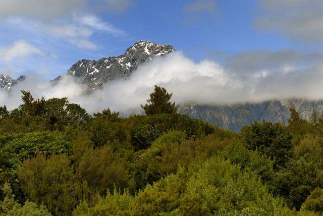 Zdjęcia: wyspa polodniowa, wiosna i zima w tle, NOWA ZELANDIA