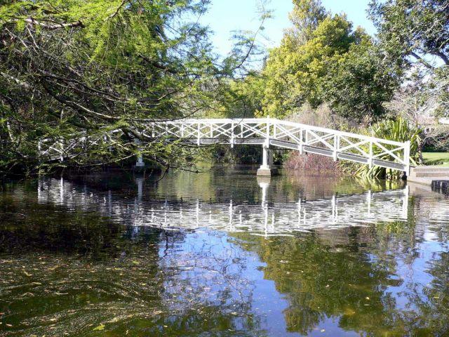 Zdjęcia: Nelson, Wyspa Poludniowa, Park w Nelson (poczatek wiosny), NOWA ZELANDIA