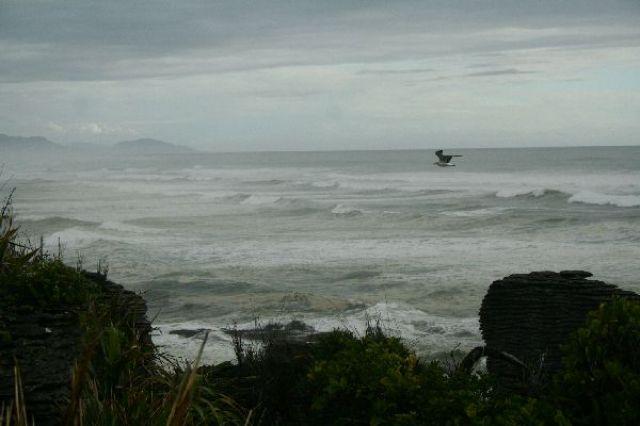 Zdj�cia: Zachodnie wybrze�e, morze Tasmana, NOWA ZELANDIA