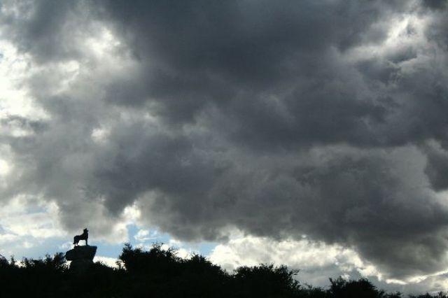 Zdjęcia: Tekapo, Pomnik psa przed burzą, NOWA ZELANDIA