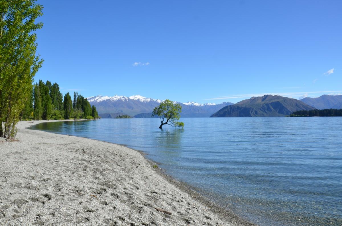 Zdjęcia: Jezioro Wanaka, WyspaPołudniowa, widoczek, NOWA ZELANDIA