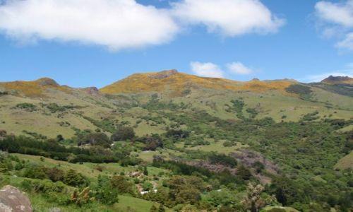 Zdjecie NOWA ZELANDIA / Wyspa Południowa / Akaroa / Półwysep Banksa 2