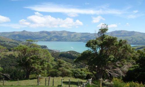 Zdjecie NOWA ZELANDIA / Wyspa Południowa / Akaroa / Półwysep Banksa3