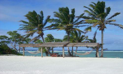 Zdjecie NOWA ZELANDIA / Cook Islands / Atol Atiutaki / Trzy wspaniale palmy