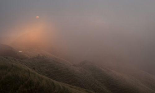 Zdjecie NOWA ZELANDIA / Auckland / Auckland / Pamietam to przez mgłe