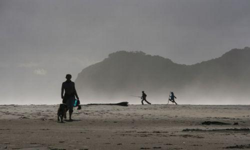 Zdjecie NOWA ZELANDIA / Wyspa północna / Piha Beach / Refleksja