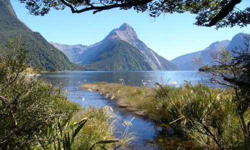 Zdjecie NOWA ZELANDIA / Wyspa Południowa / Fiordland NP / Milford Sound