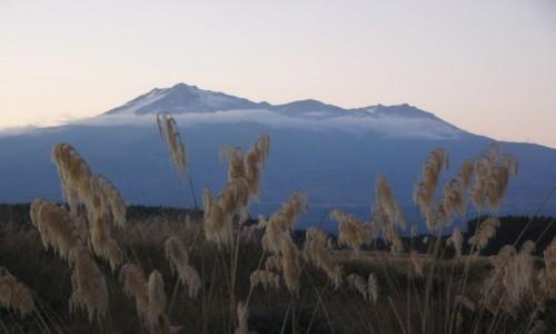 Zdjęcie NOWA ZELANDIA / Wyspa Północna / Tongariro NP / Ruapehu