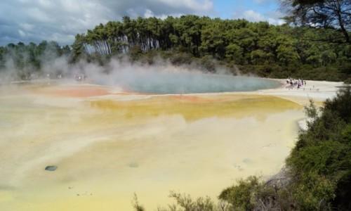 Zdjęcie NOWA ZELANDIA / Wyspa Północna / Rotorua / Tęczowe tarasy