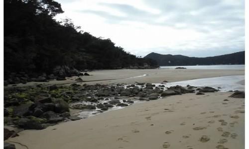 NOWA ZELANDIA / wyspa południowa / szlak / Abel Tasman