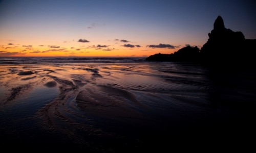 Zdjecie NOWA ZELANDIA / West Coast, Auckland / Piha Beach / Piha Beach