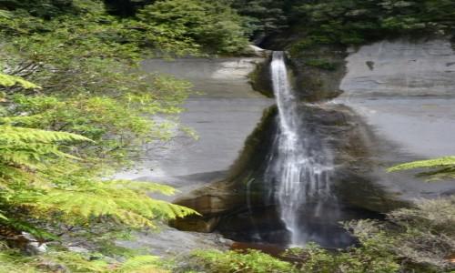 Zdjęcie NOWA ZELANDIA / Taranaki / Tatu / Wodospad Mt Damper