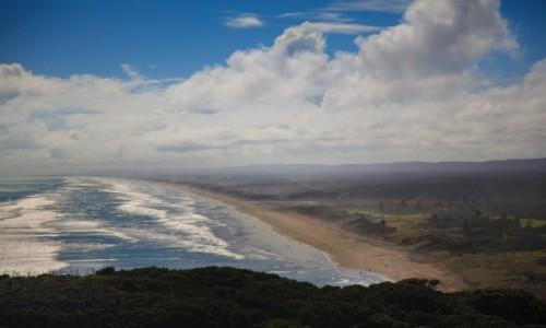 Zdjęcie NOWA ZELANDIA / Auckland / Muriwai  / Plaża Muriwai