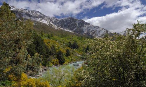 Zdjęcie NOWA ZELANDIA / brak / wyspa polodniowa / wiosna w gorach