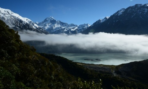 Zdjecie NOWA ZELANDIA / Mt cook / Mt Cook Park / Poranek na szlaku