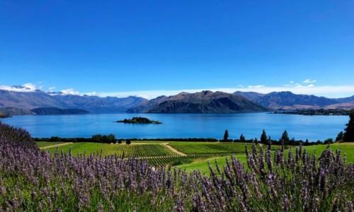 Zdjecie NOWA ZELANDIA / Otago / Wanaka / Jezioro Wanaka