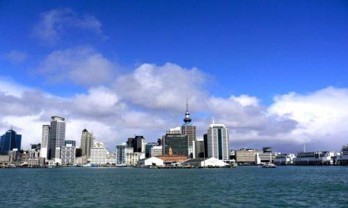 Zdjecie NOWA ZELANDIA / Wyspa Polnocna / miasto / Auckland