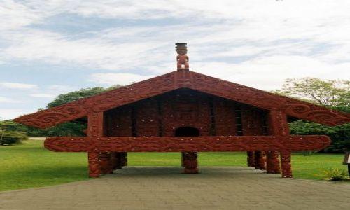 Zdjęcie NOWA ZELANDIA / Rotorua / rezerwat / zagadka następna