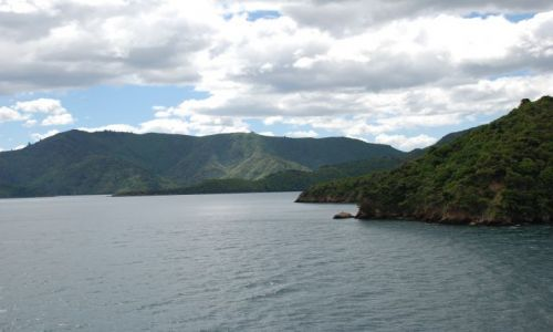 Zdjecie NOWA ZELANDIA / Marlborough Sound / Picton / Z Wellington do Picton