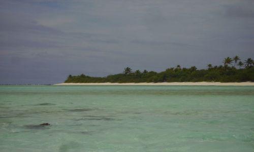 Zdjecie NOWA ZELANDIA / Wyspy Cooka / Atol Aitutaki / atol