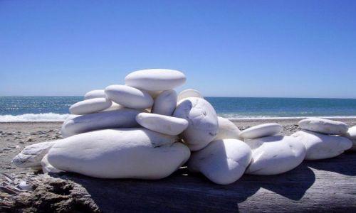 Zdjecie NOWA ZELANDIA / Południowa Wyspa / plaża nad Morzem Tasmana - Westland / układanka