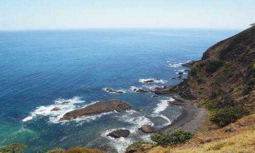 Zdjęcie NOWA ZELANDIA / Far North, Northland / okolice Cape Reinga / wzdłuz pn wybrzeza...