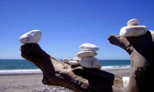 Zdjecie NOWA ZELANDIA / Wyspa Południowa / nad Morzem Tasmana / kompozycja na plaży