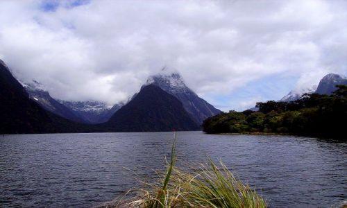 Zdjecie NOWA ZELANDIA / -Południowa Wyspa / Milford Sound / Milford Sound